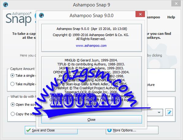 Ashampoo Snap 9.0.0 Multilingual